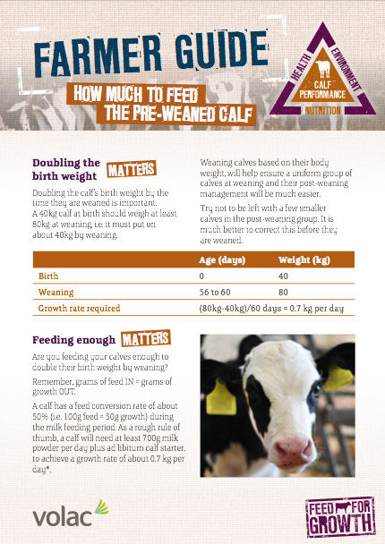 Nutrition: Farmers guide - How much to feed the Pre-weaned Calf